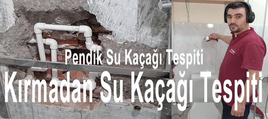 Pendik-Su-Kaçağı-Tespiti-0532-255-43-01